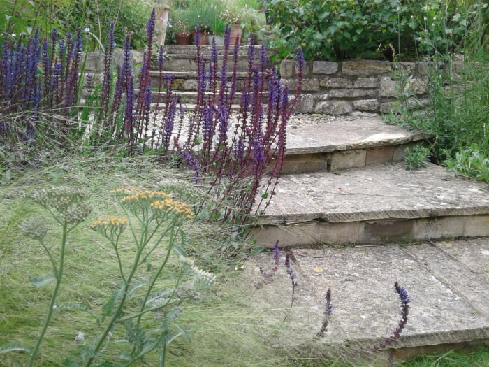 Bath, Somerset Garden Inspiration